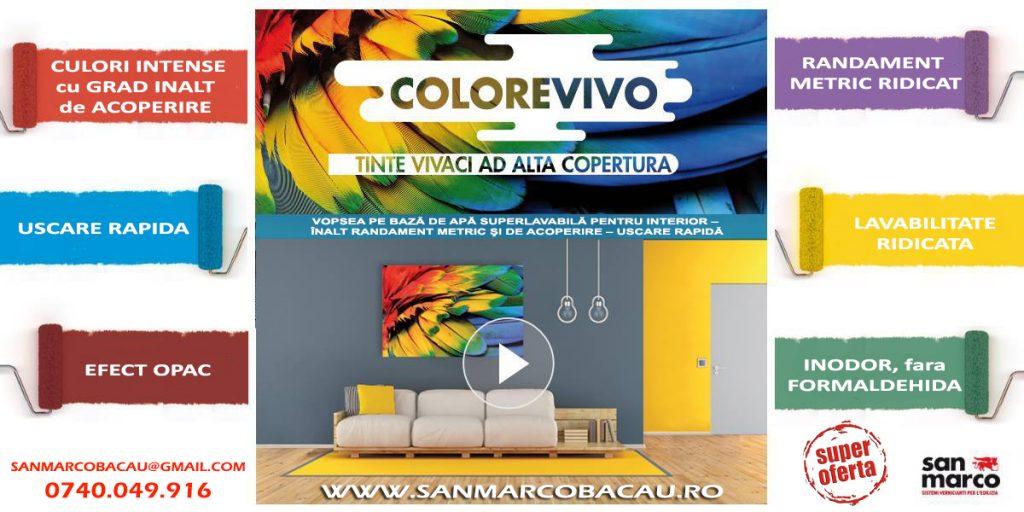Colorevivo-banner01